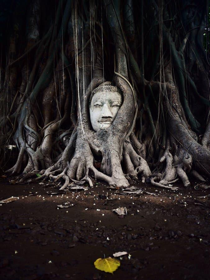 La Thaïlande invisible photo stock