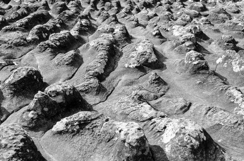 La tierra de la piedra del botón imágenes de archivo libres de regalías