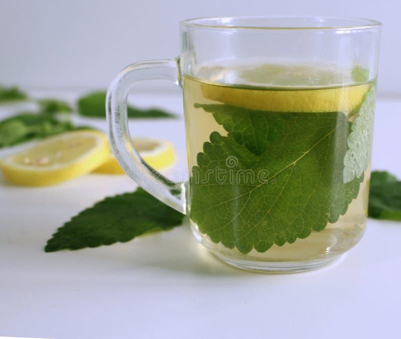 La tisane dans une tasse en verre, baume de citron frais part Le baume de thé, l'huile essentielle, et l'extrait sont employés de photo stock