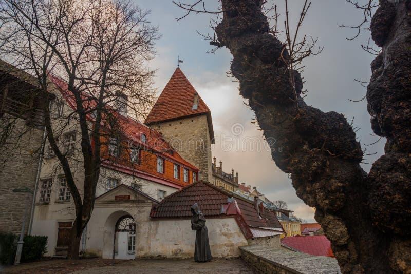 La torre anterior Neitsitorn de la prisión en Tallinn vieja, Estonia Torre virginal imagen de archivo