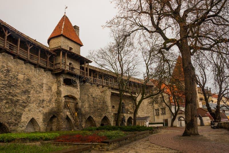 La torre anterior Neitsitorn de la prisión en Tallinn vieja, Estonia Torre virginal imagenes de archivo