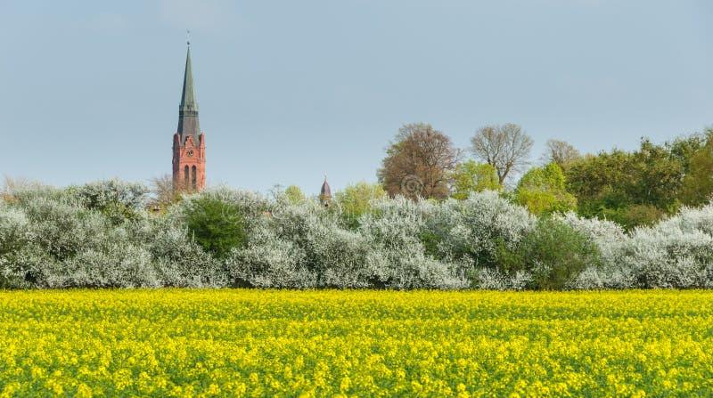 La torre de San Martín y el ayuntamiento se elevan en Nienburg fotos de archivo