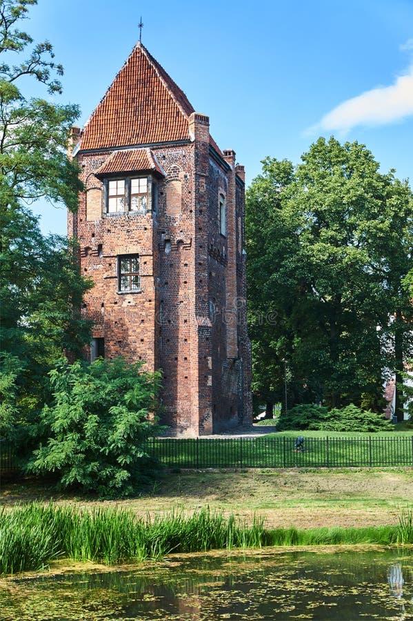 La torre medieval de ladrillos en Szamotuly fotos de archivo