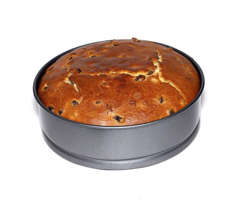 La torta de Pascua coció con las pasas en la forma para cocer aislada fotografía de archivo libre de regalías