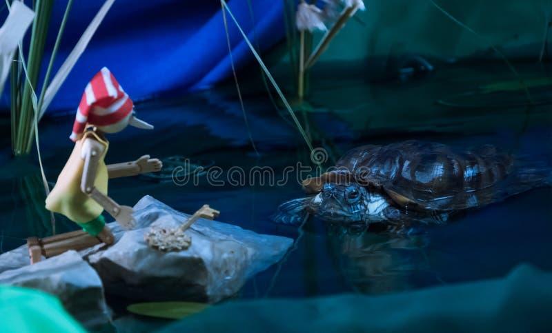 La tortue rencontre Pinocchio et lui donne la touche fonctions étendues photographie stock libre de droits