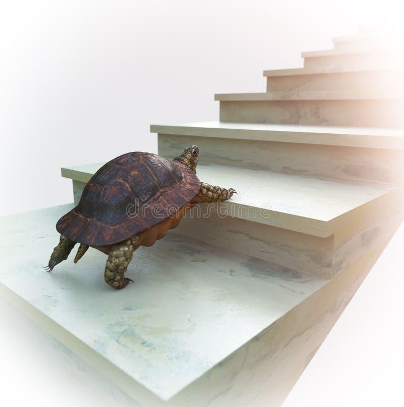 La tortuga móvil quiere subir en la composición del concepto de las escaleras libre illustration