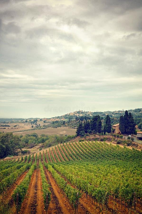 La Toscana in autunno, in cielo tempestoso delle nubi ed in vigna fotografia stock libera da diritti