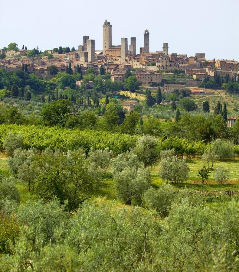 La Toscana, gimignano del san fotografia stock libera da diritti