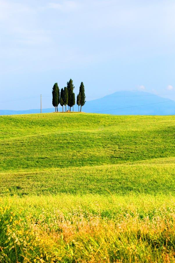 La Toscana, Italia fotografia stock