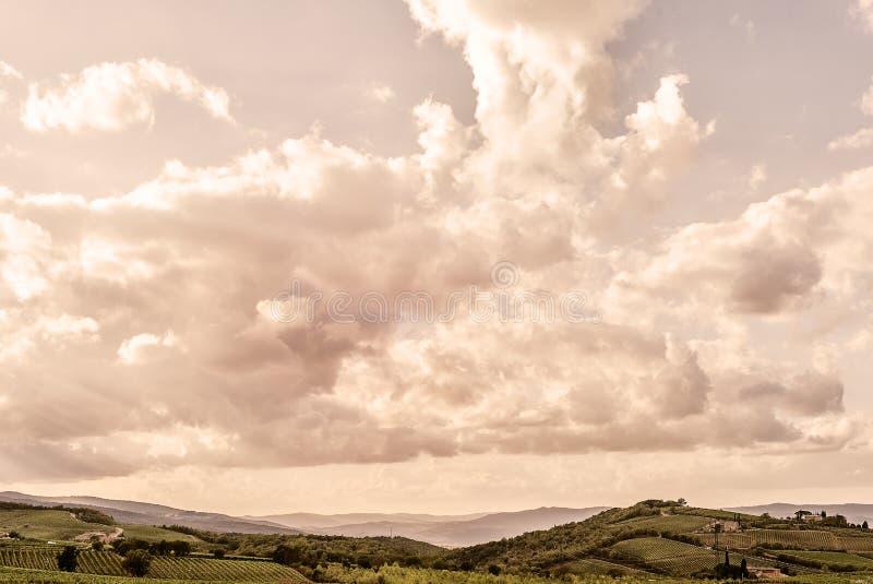 La Toscana - la Rolling Hills e le vigne sotto la città della sommità di Montalcino immagine stock