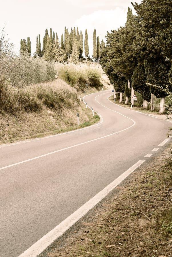 La Toscana - la strada al Archabbey di Monte Oliveto Maggiore From Buonconvento immagini stock libere da diritti