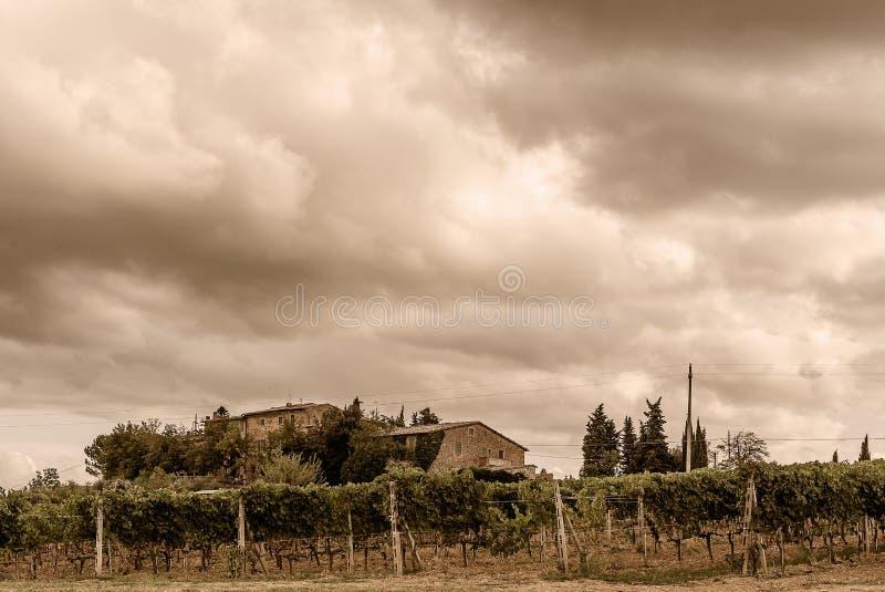 La Toscana - vigne e proprietà sotto la città della sommità di Montalcino fotografia stock libera da diritti