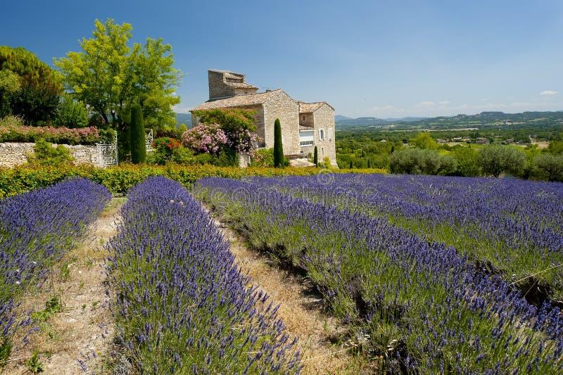 La Toscane photo libre de droits