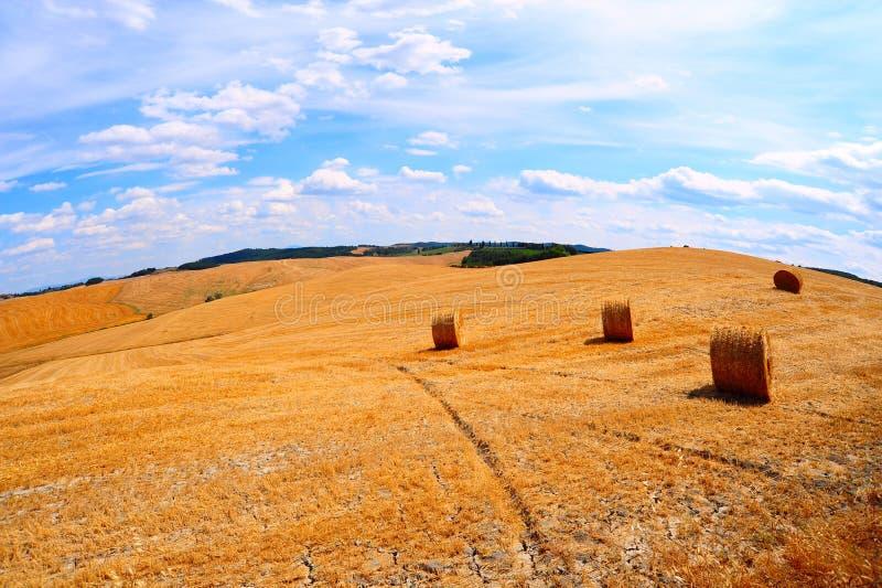 La Toscane avec des balles de foin image libre de droits