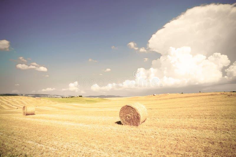 La Toscane avec des balles de foin images stock