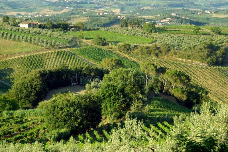 La Toscane, Italie photo stock