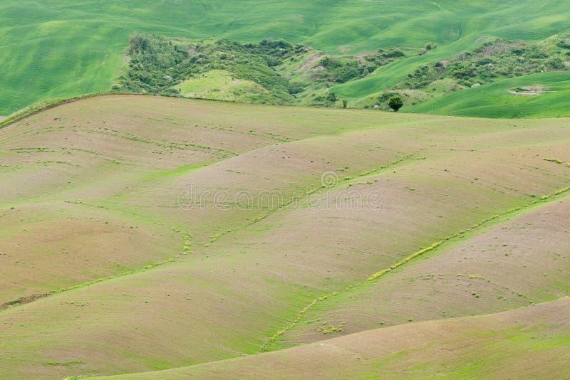 La Toscane Italie images libres de droits