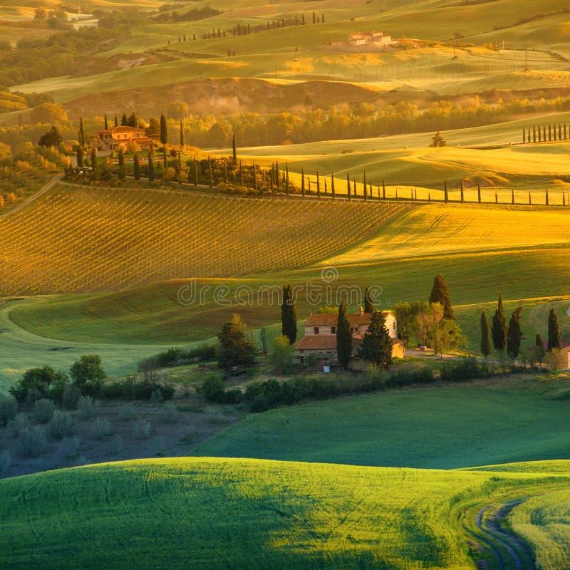 La Toscane - l'Italie photos libres de droits