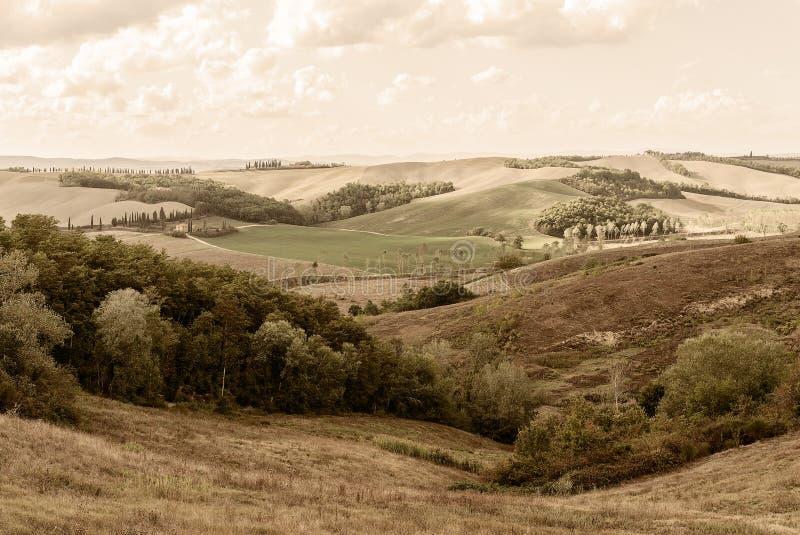 La Toscane - regardant occidental au-dessus de la Rolling Hills près de Buonconvento photographie stock libre de droits