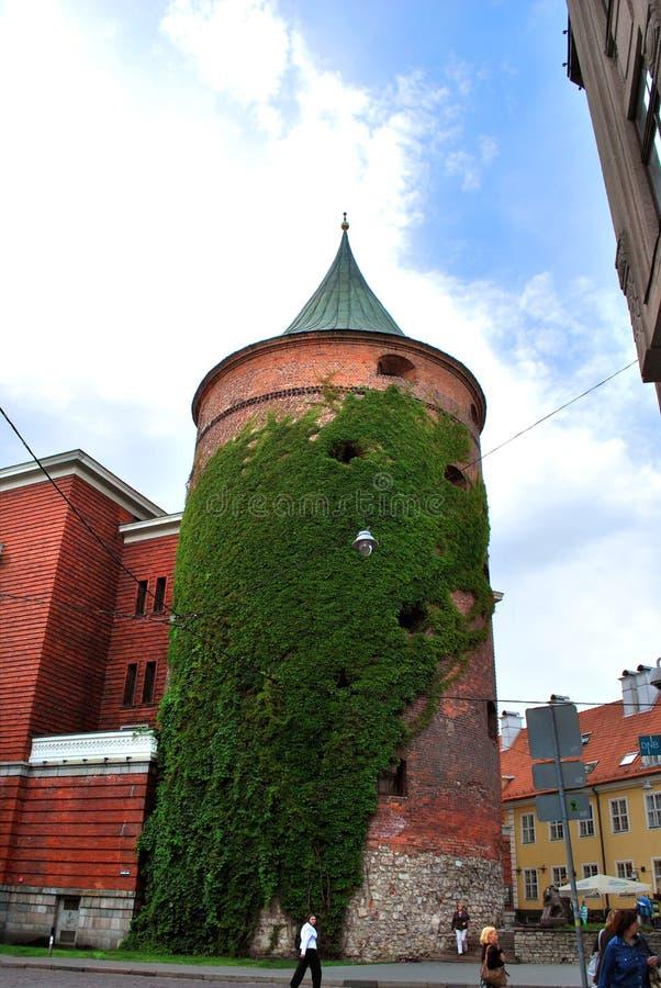 La tour de poudre au centre historique de Riga photographie stock