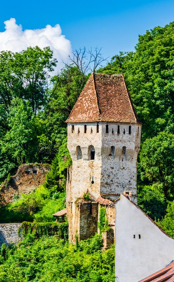 La tour des vieux étameurs médiévaux dans Sighisoara, comté de Mures, la Transylvanie, Roumanie photographie stock libre de droits