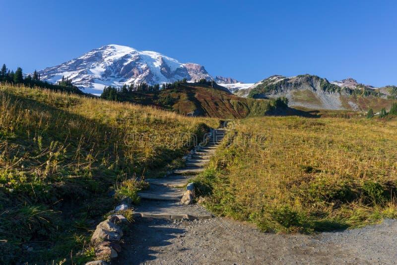 La traînée d'horizon au bâti Rainier National Park image stock