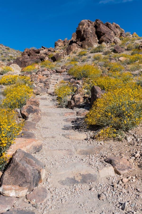 La traînée de saleté monte des escaliers dans le désert photos libres de droits