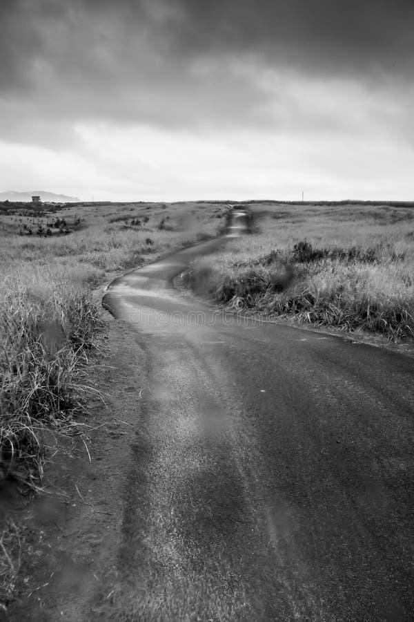 La traccia di camminata in bianco e nero conduce ad una Camera dal campo di erba sull'orizzonte nella tempesta in Long Beach Wash fotografia stock libera da diritti