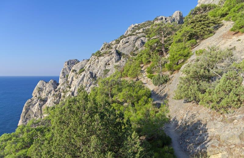 La traccia sul fianco di una montagna ripido fotografia stock