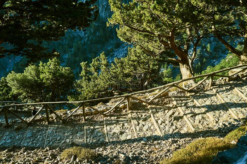La traccia turistica nella gola di Samaria fotografia stock libera da diritti