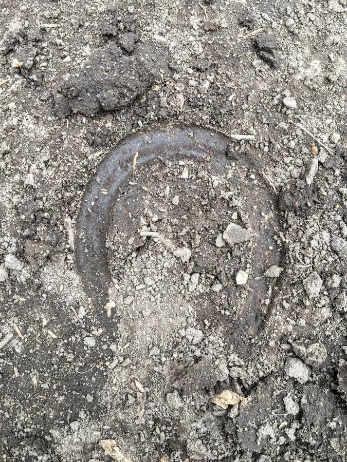La trace du sabot d'un cheval, se ferment, détaillé, sur la saleté traîne à cheval par des arbres sur la fourchette et la Rose Ca photo libre de droits