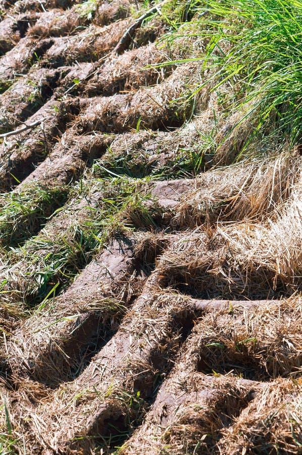 La trace du tracteur au sol, une voie de tracteur, même la bande de roulement dans la terre image stock