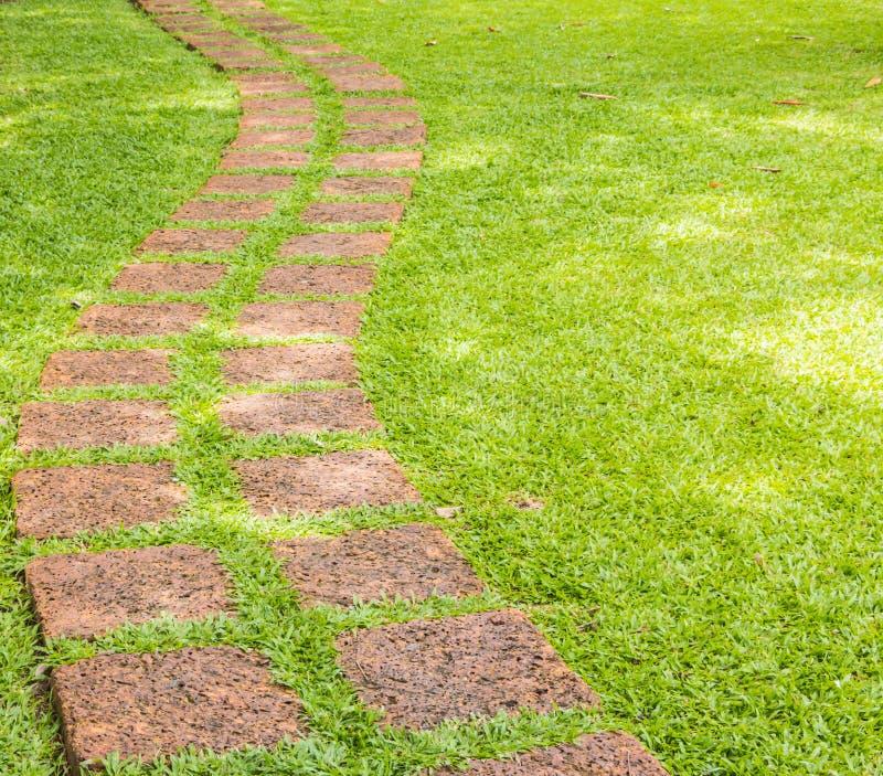 La trayectoria de piedra del paseo del bloque en el parque con la hierba verde imagen de archivo libre de regalías