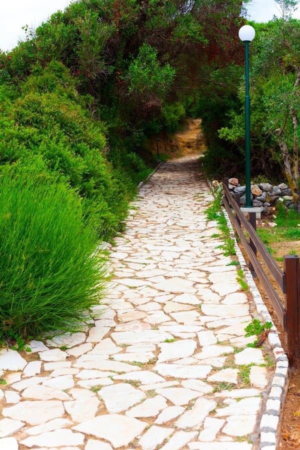 La trayectoria de piedras a través de la naturaleza y de los arbustos verdes Concepto de la aventura y de la naturaleza con el ca imagenes de archivo