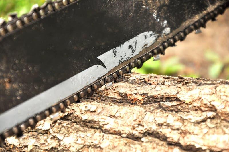La tronçonneuse coupe un rondin se trouvant au sol La chaîne tourne photographie stock