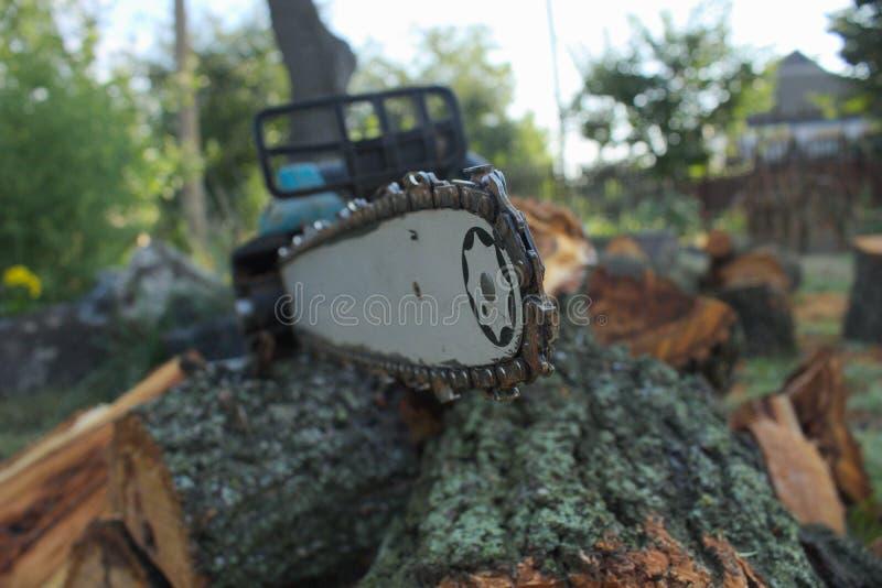 La tronçonneuse se trouve sur le bois de chauffage photographie stock