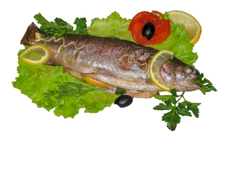 La trota ha cotto si trova sulle foglie dell'isolato dell'insalata immagine stock