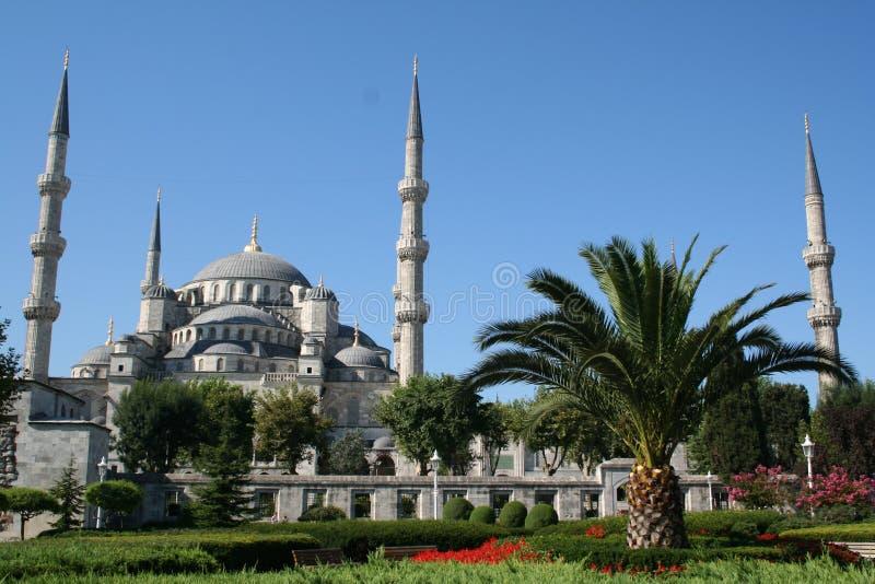 La Turchia. Costantinopoli. Moschea blu fotografia stock