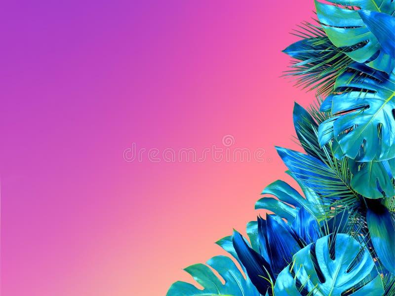 La turquesa de moda coloreó cerca para arriba de diversas hojas tropicales en fondo brillante del rosa y violeta imagenes de archivo