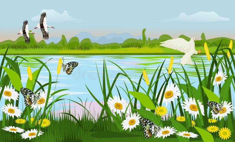 La ubicación del pantano con los árboles de hierba, las flores mariposa y los pájaros están volando ilustración del vector