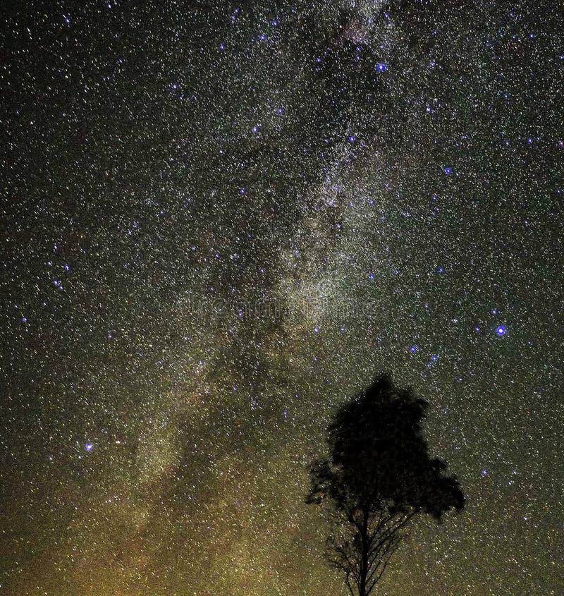 La vía láctea protagoniza observación de la constelación del Cygnus y de Lyra foto de archivo