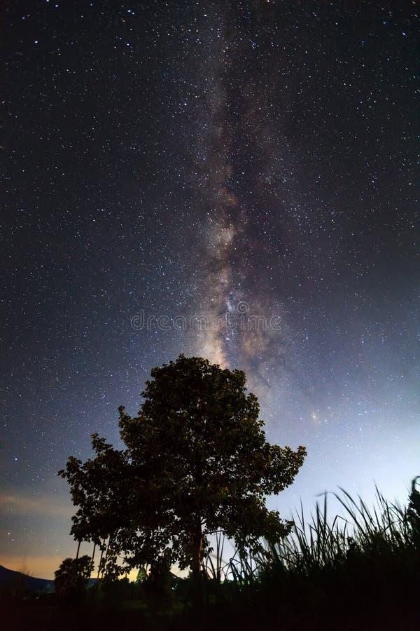 Download La Vía Láctea Sobre La Sombra De Un árbol, Photograp Largo De La Exposición Imagen de archivo - Imagen de grano, sobre: 64213373