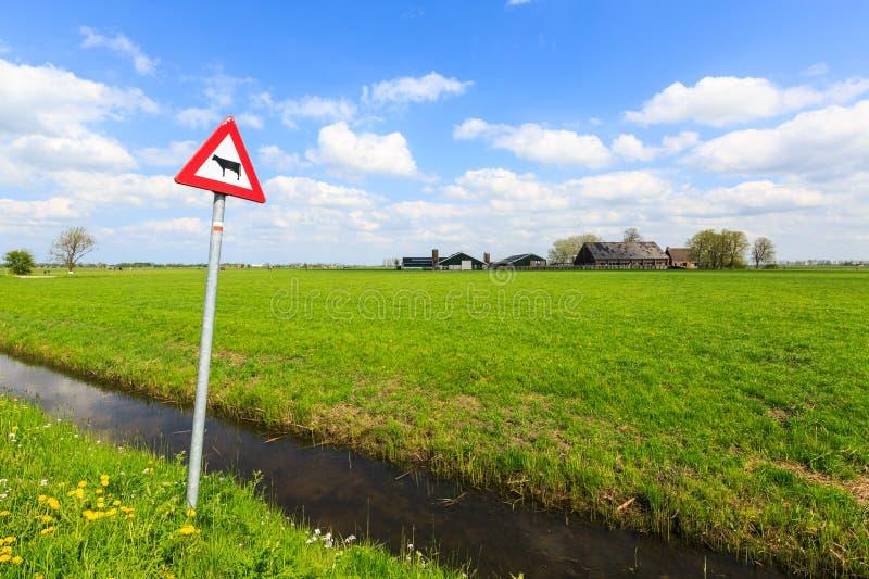 La vaca peligro señal adentro un paisaje holandés fotografía de archivo libre de regalías