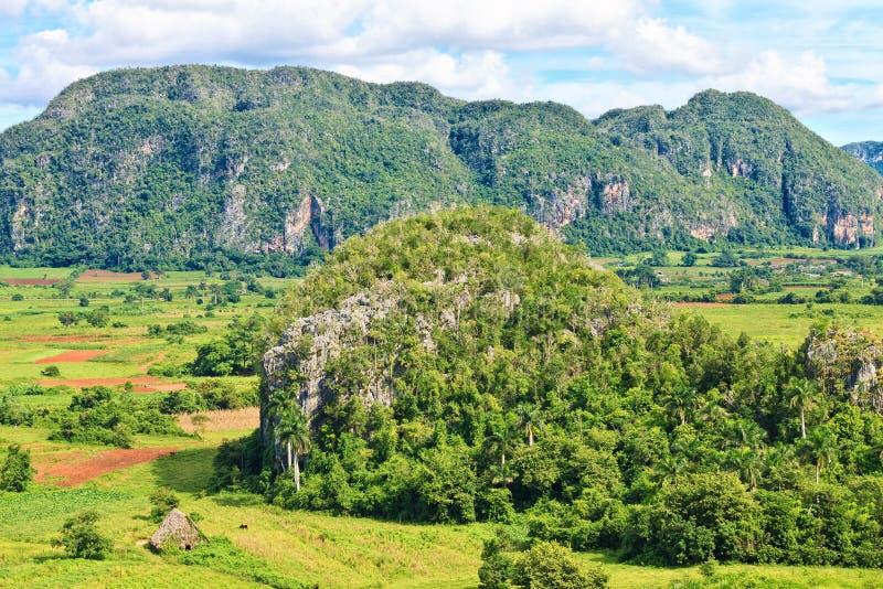 La vallée de Vinales au Cuba image stock