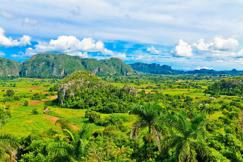 La vallée de Vinales au Cuba photographie stock libre de droits