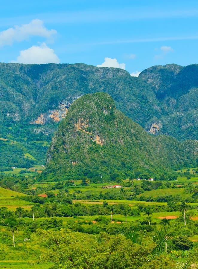 La vallée de Vinales au Cuba photos libres de droits