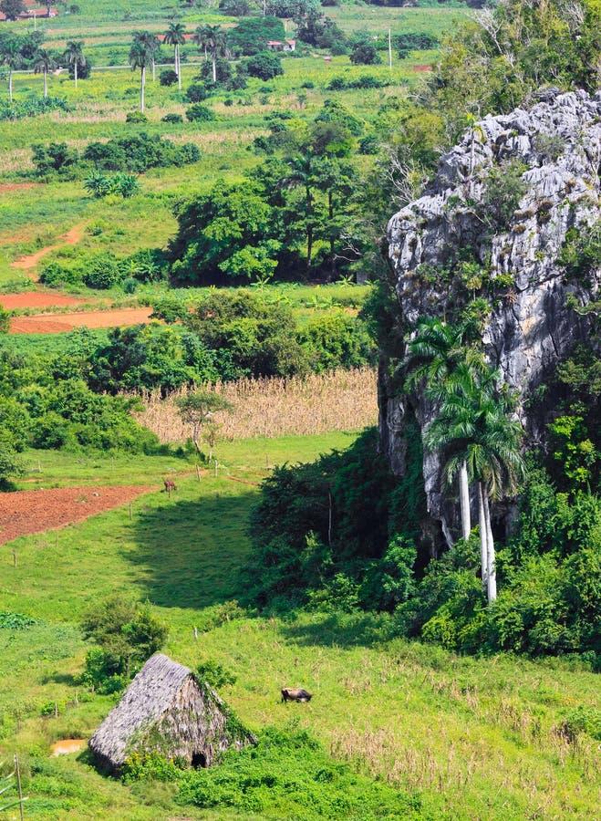 La vallée de Vinales au Cuba photo stock