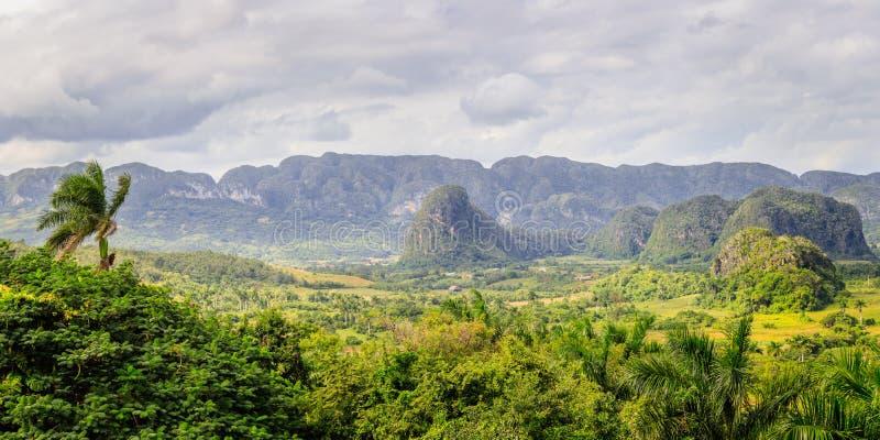 La vallée des Caraïbes verte avec de petites maisons et collines cubaines de mogotes aménagent le panorama en parc, Vinales, Pina photos stock