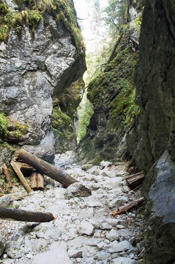 La Vallée Koscieliska Photos libres de droits