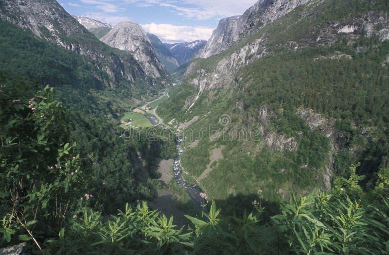 La valle di Naeroy in Norvegia sudoccidentale, come visto dall'hotel di Stalheim La valle può essere veduta come componente del â fotografia stock